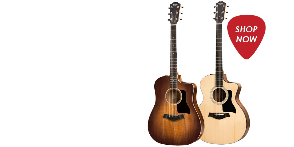 an image of two acoustic guitars against a white background